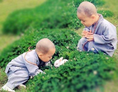 尊重生命的佛教素食�^